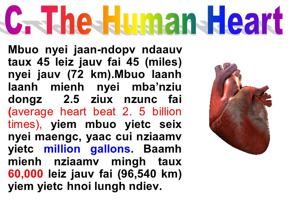 C. The Human Heart