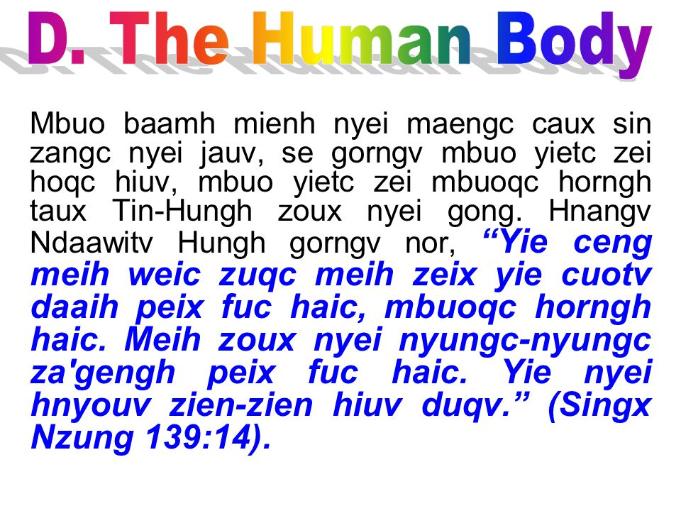 D. The Human Body