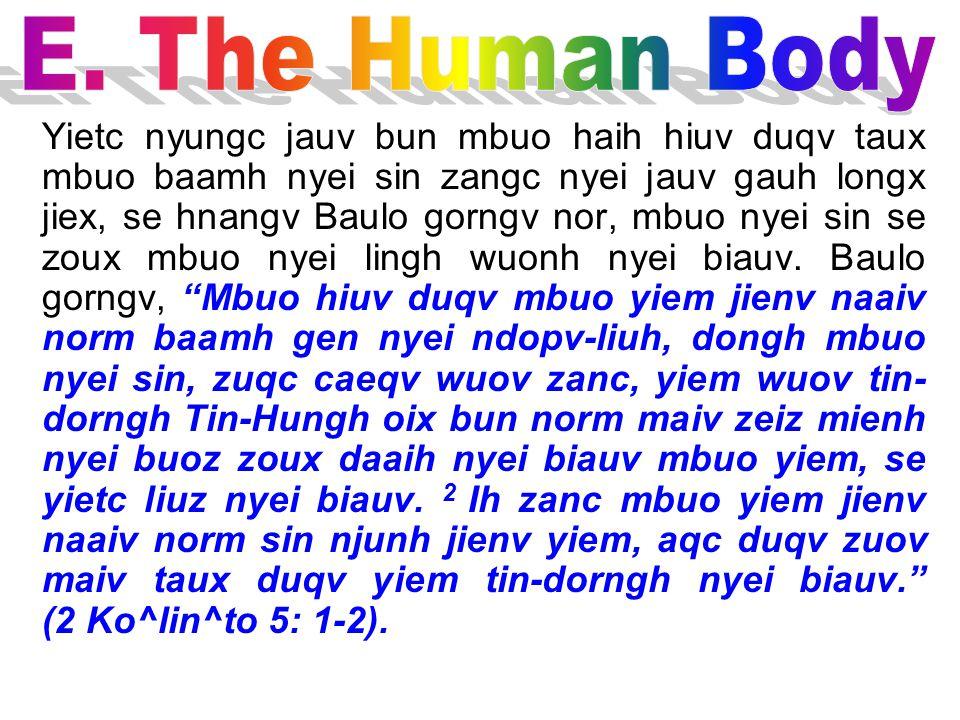 E. The Human Body