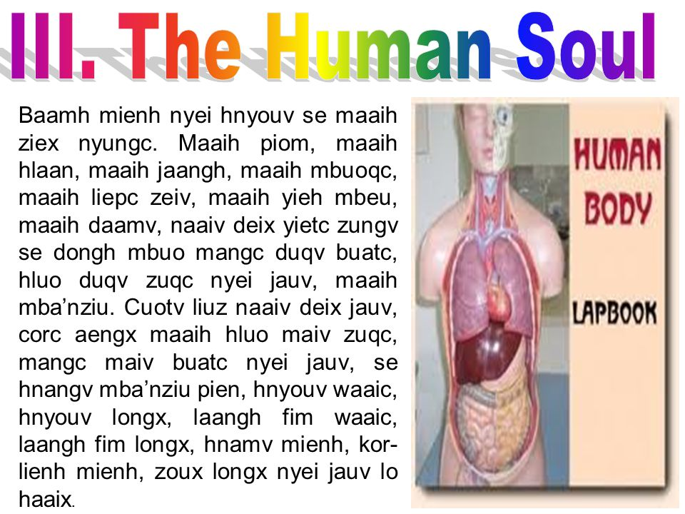 III. The Human Soul
