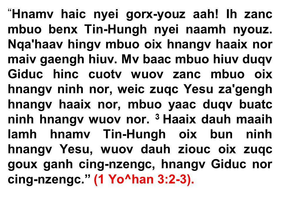 Hnamv haic nyei gorx-youz aah