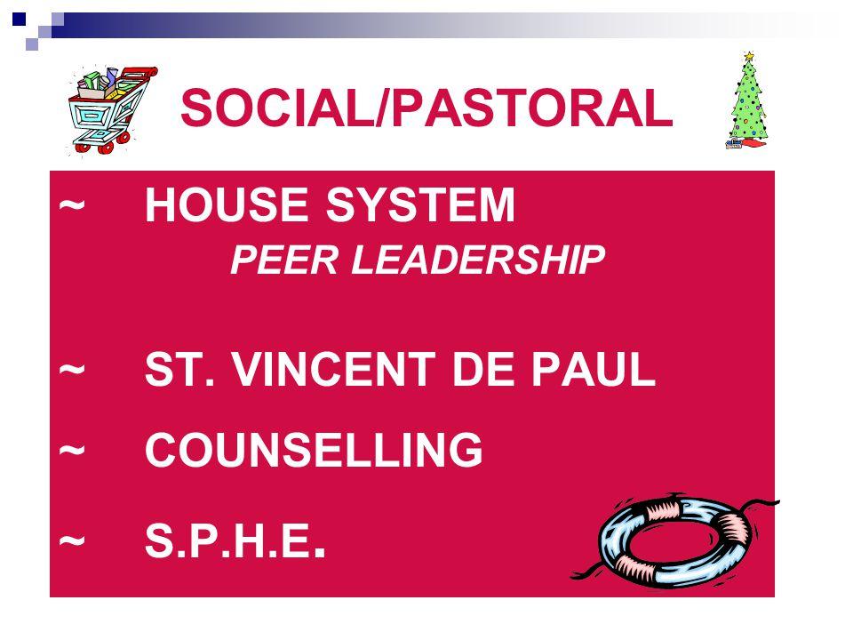 SOCIAL/PASTORAL ~ HOUSE SYSTEM ~ ST. VINCENT DE PAUL ~ COUNSELLING