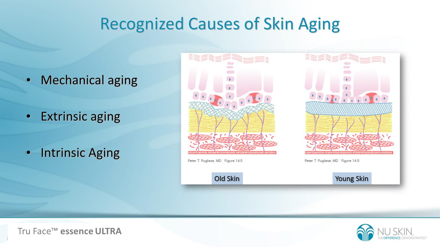 Recognized Causes of Skin Aging