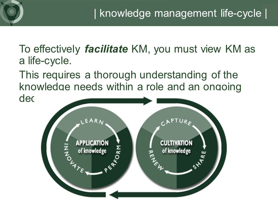 | knowledge management life-cycle