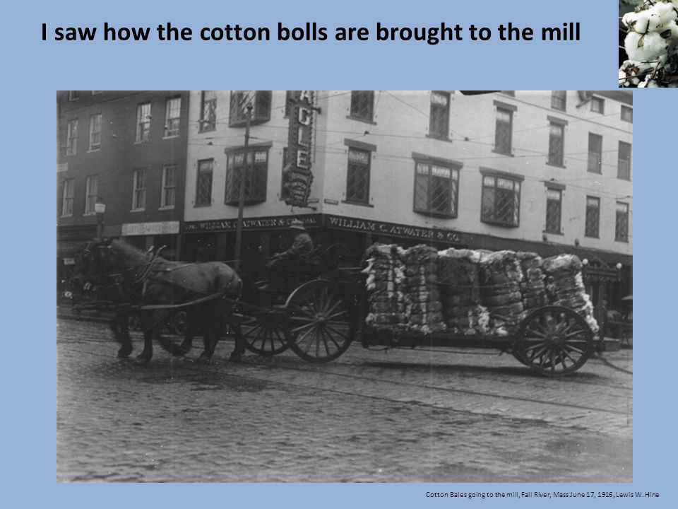 I saw how the cotton bolls are brought to the mill