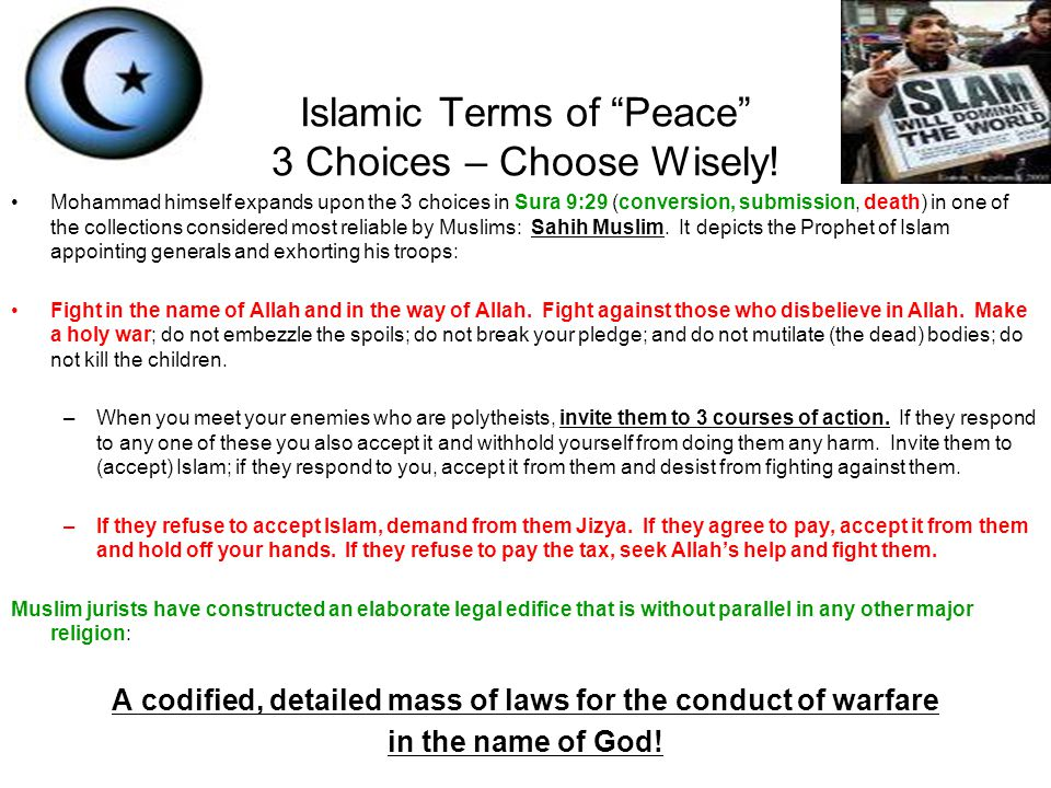 Islamic Terms of Peace 3 Choices – Choose Wisely!