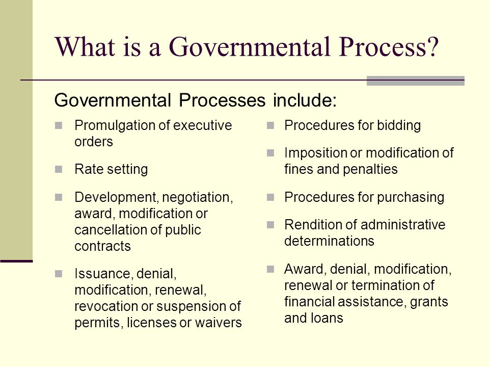 What is a Governmental Process