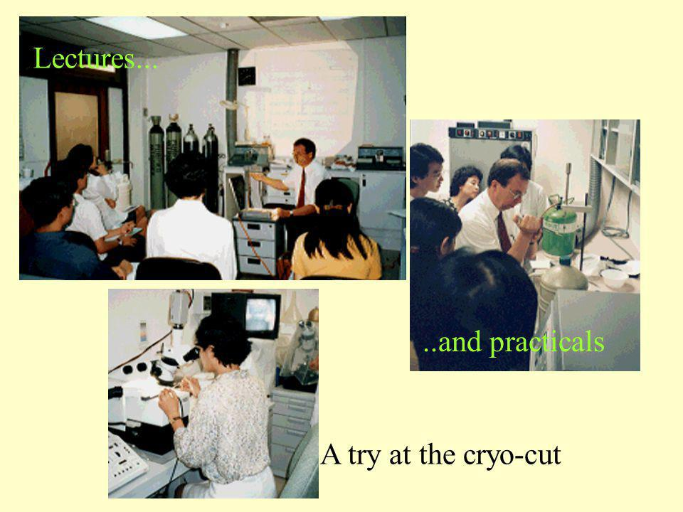 Lectures... ..and practicals A try at the cryo-cut