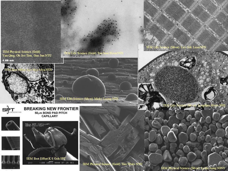 TEM Life Science (Silver) Loy Gek Luan NUS