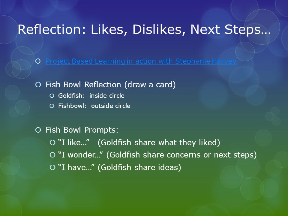 Reflection: Likes, Dislikes, Next Steps…