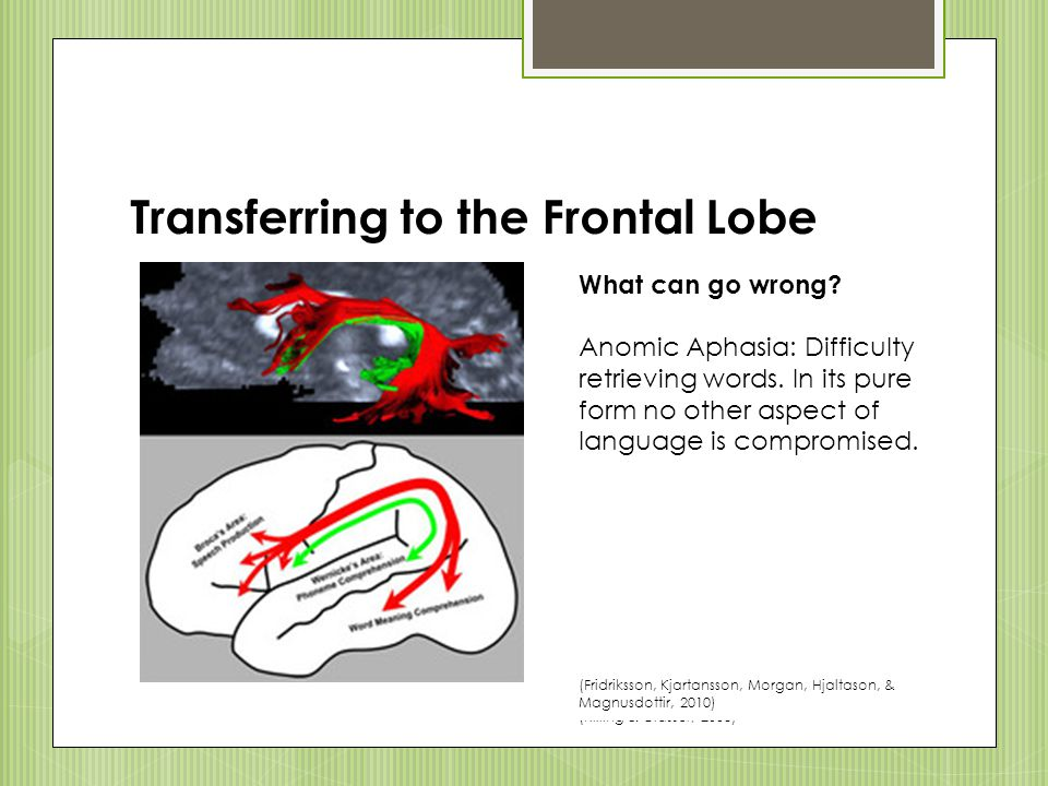 Transferring to the Frontal Lobe