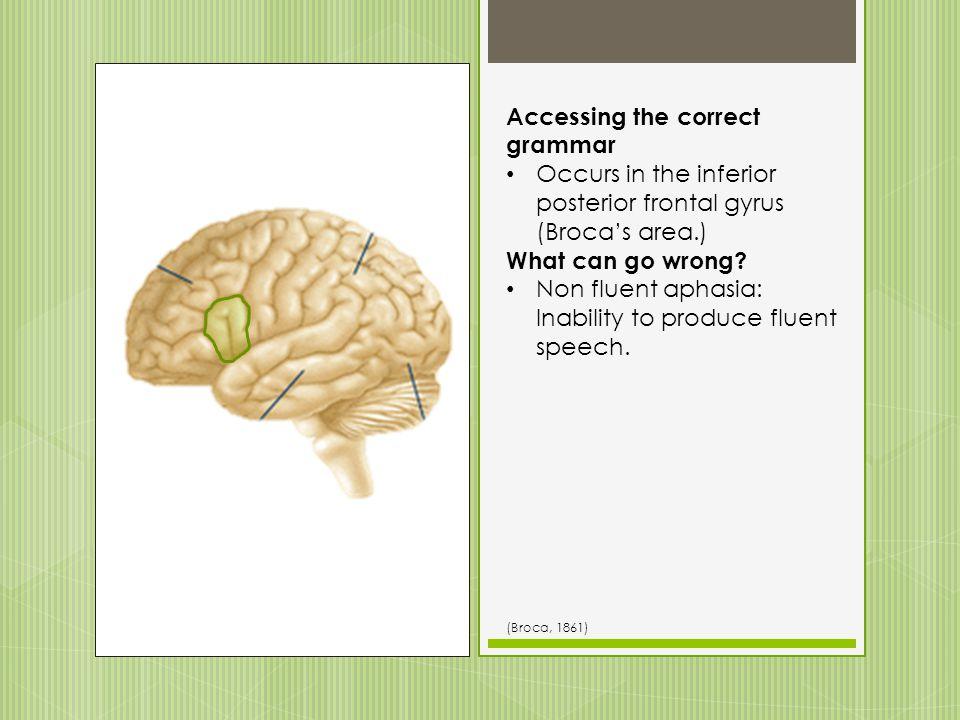 Accessing the correct grammar