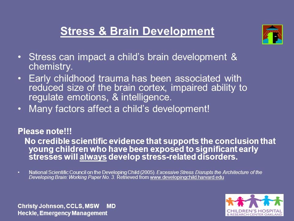 Stress & Brain Development
