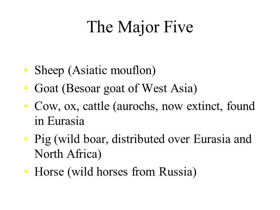 The Major Five Sheep (Asiatic mouflon) Goat (Besoar goat of West Asia)