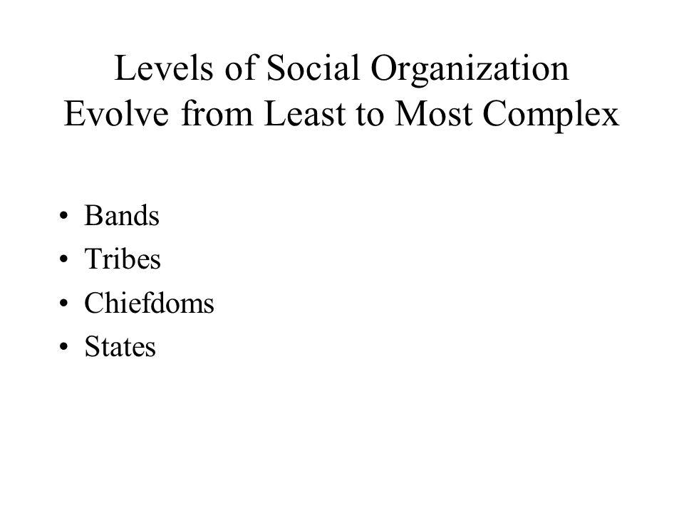 Levels of Social Organization Evolve from Least to Most Complex