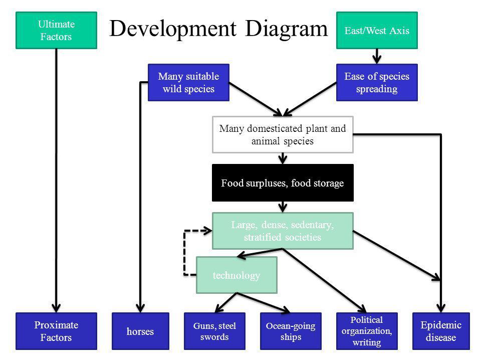 Development Diagram Ultimate Factors East/West Axis