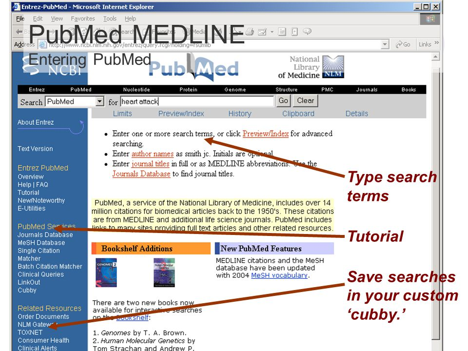 PubMed MEDLINE Entering PubMed