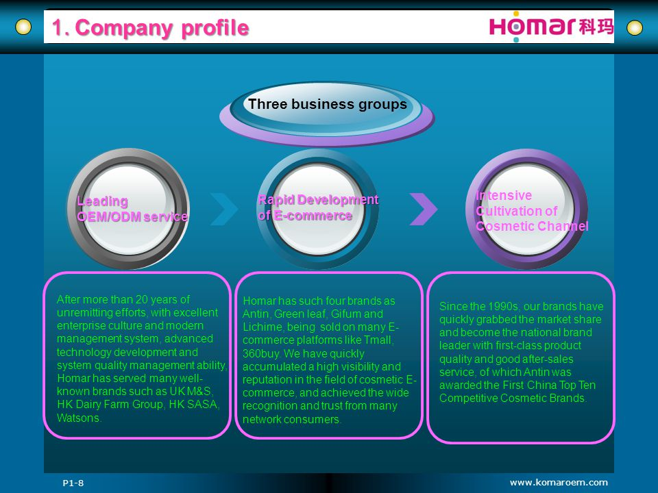 1. Company profile Three business groups