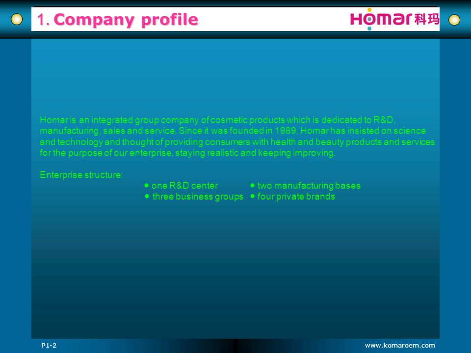 1. Company profile