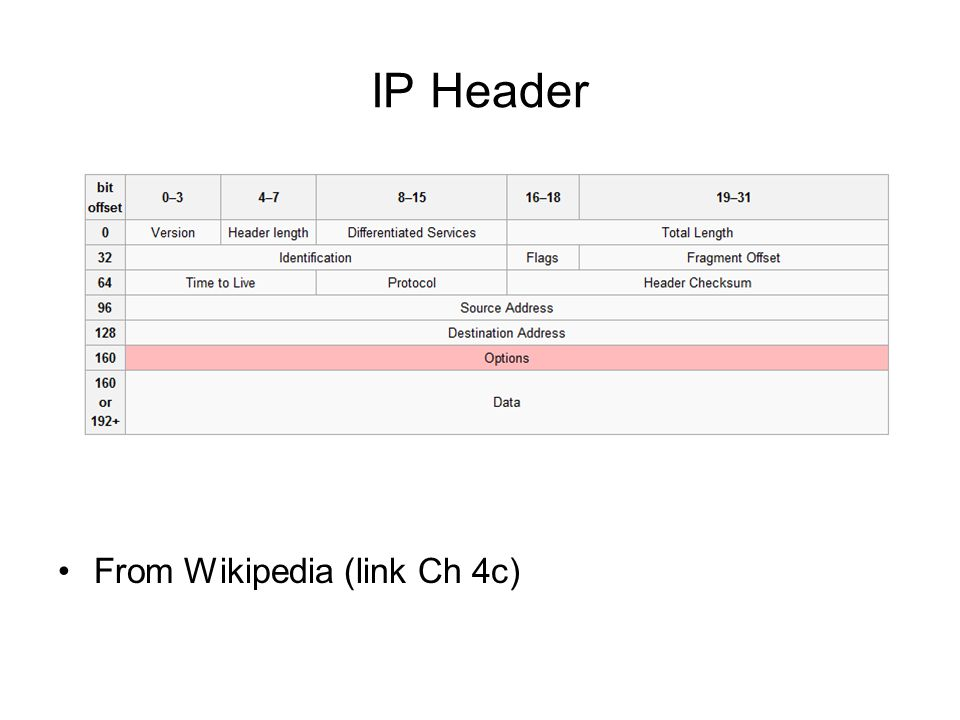 IP Header From Wikipedia (link Ch 4c)