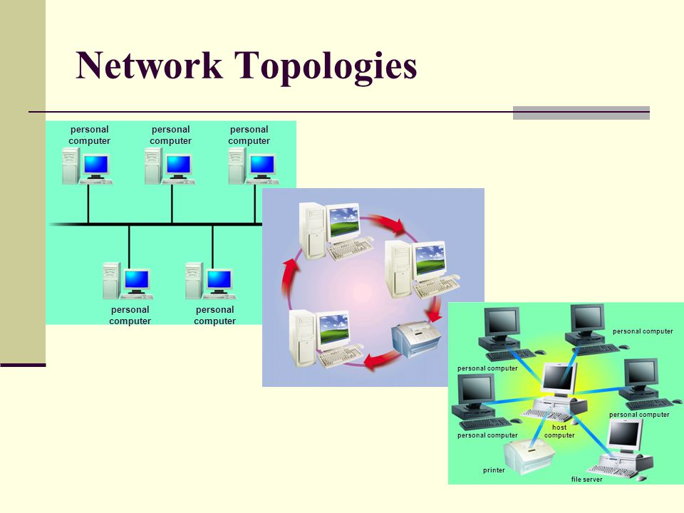 Network Topologies personal computer personal computer host computer