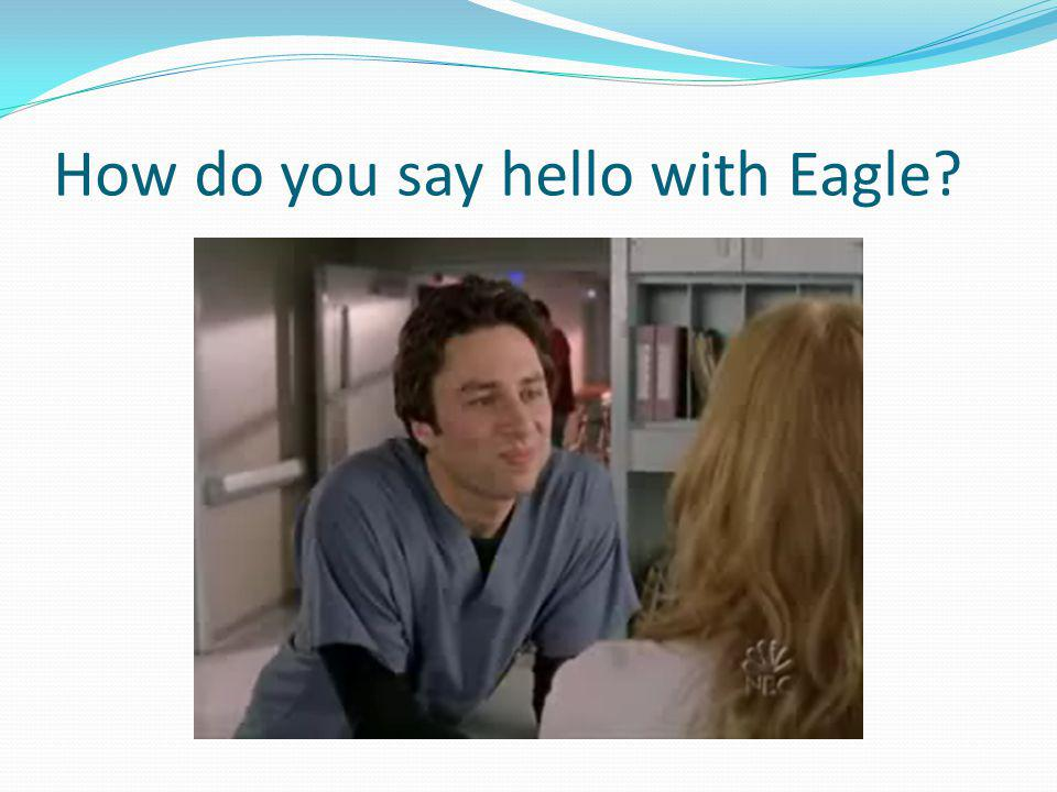 How do you say hello with Eagle