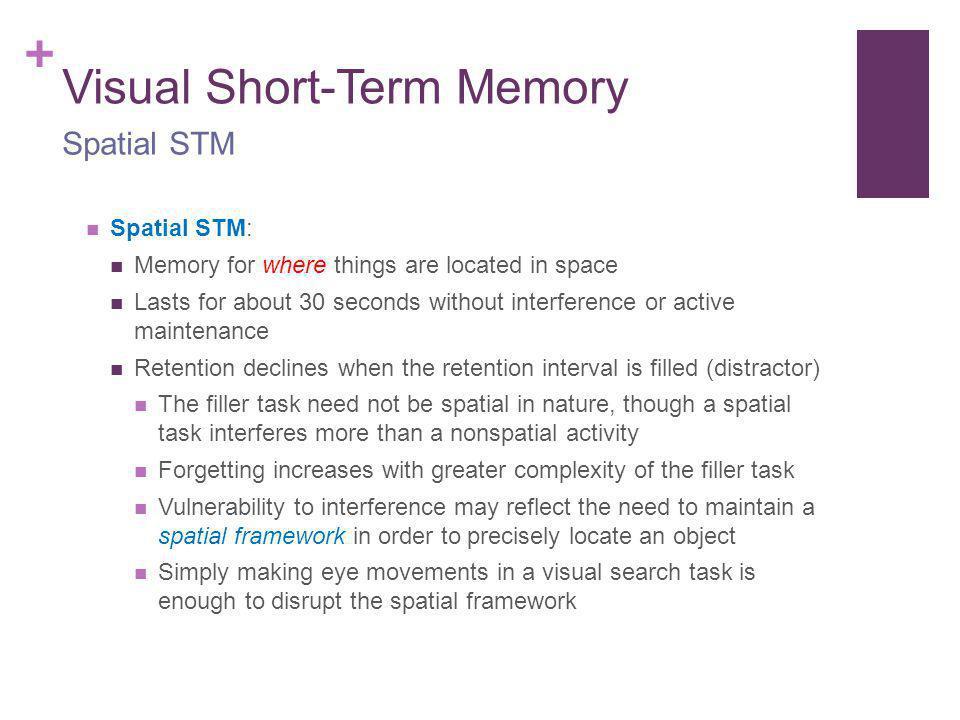 Visual Short-Term Memory