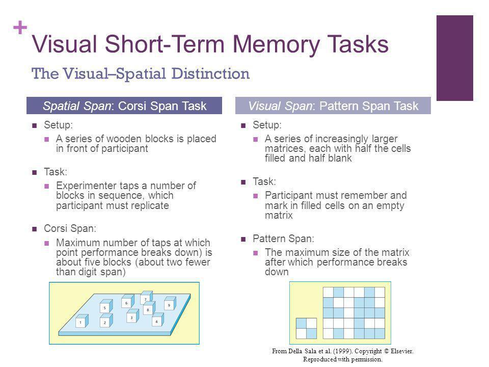 Visual Short-Term Memory Tasks