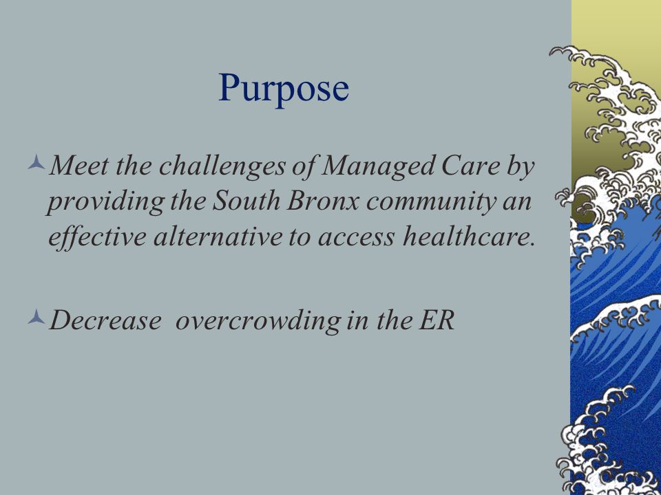 Purpose Meet the challenges of Managed Care by providing the South Bronx community an effective alternative to access healthcare.