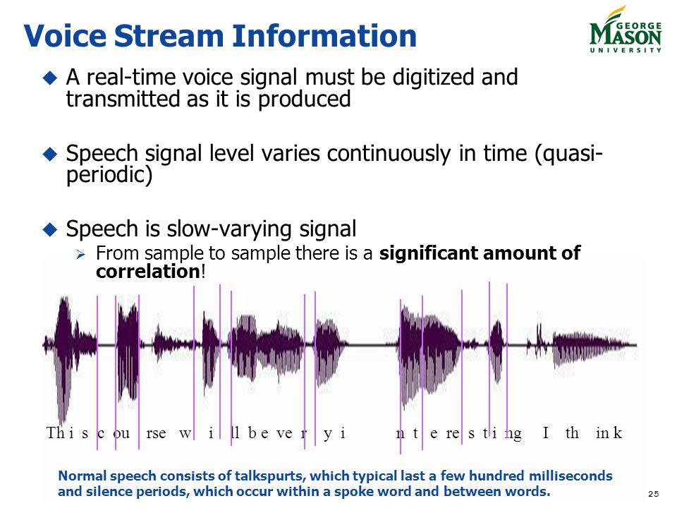 Voice Stream Information