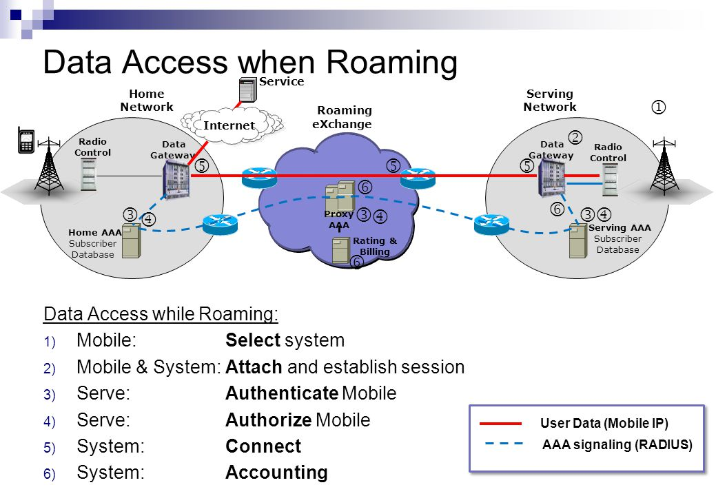 Data Access when Roaming