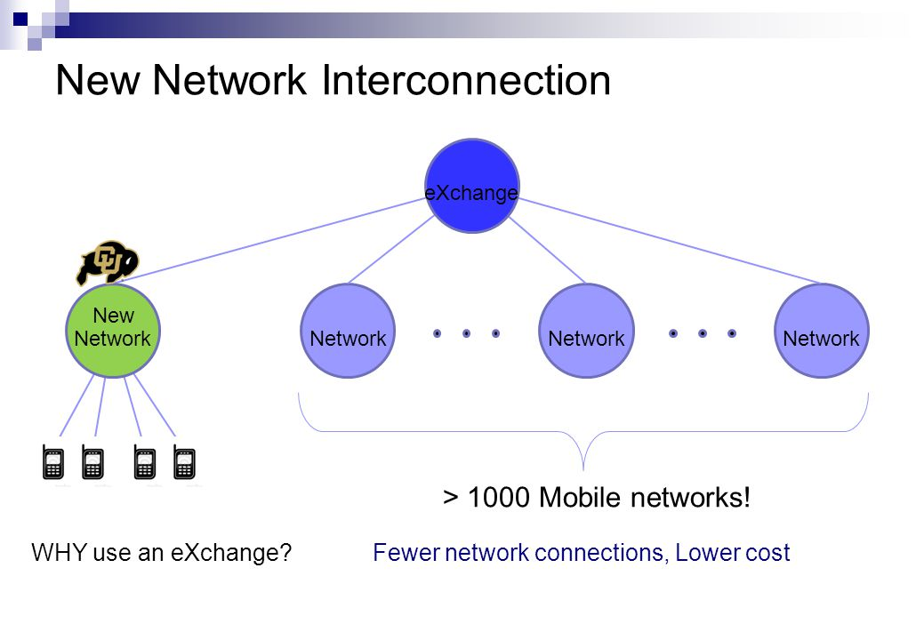 New Network Interconnection