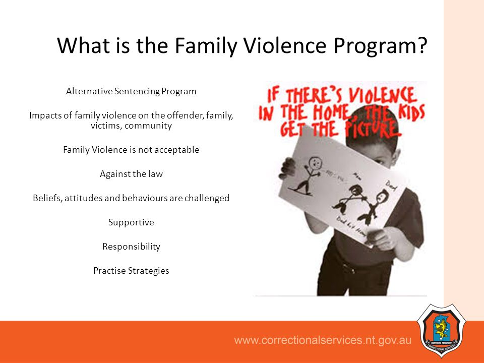 What is the Family Violence Program