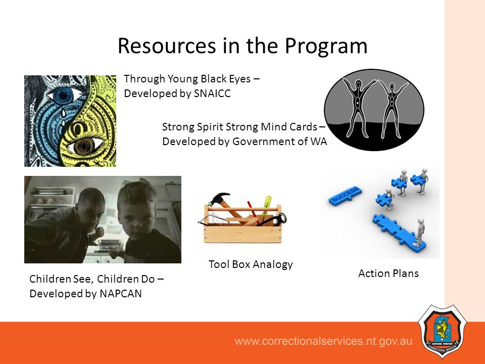 Resources in the Program
