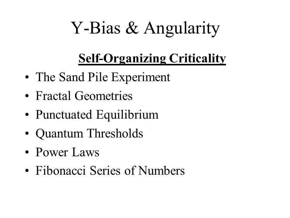 Self-Organizing Criticality