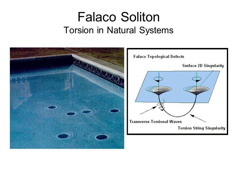 Falaco Soliton Torsion in Natural Systems
