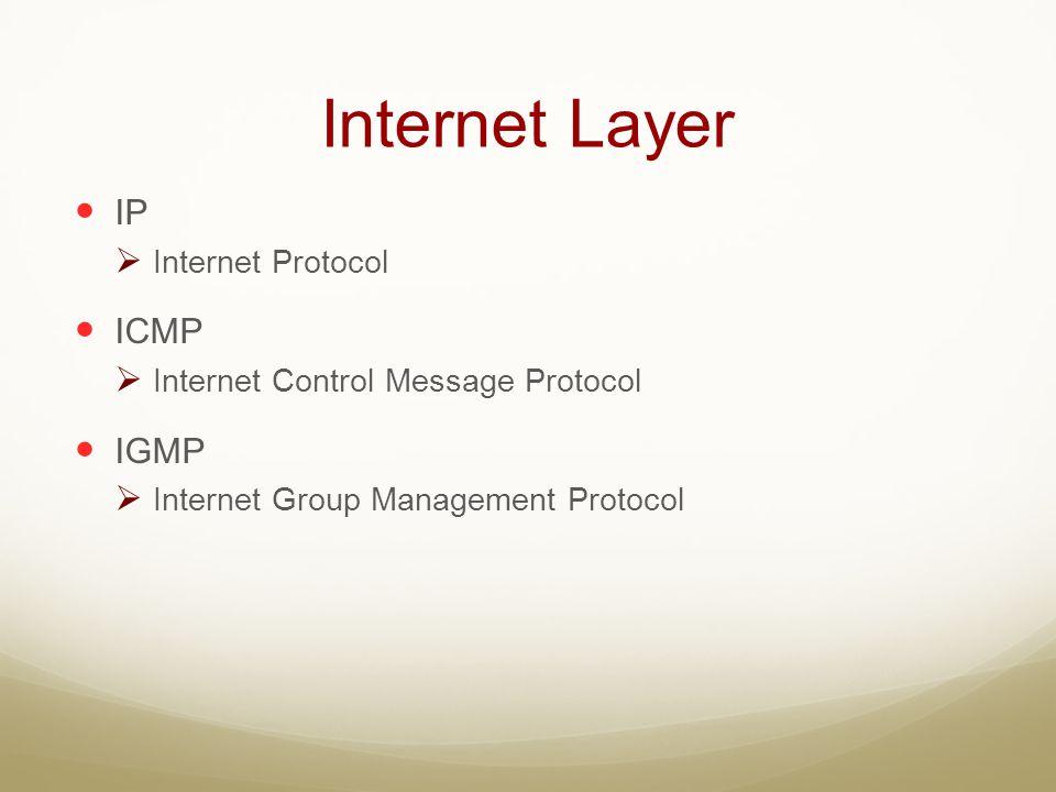 Internet Layer IP ICMP IGMP Internet Protocol