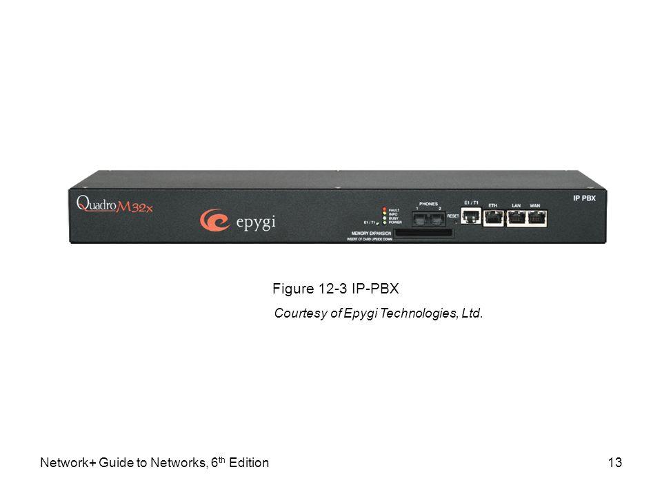 Figure 12-3 IP-PBX Courtesy of Epygi Technologies, Ltd.