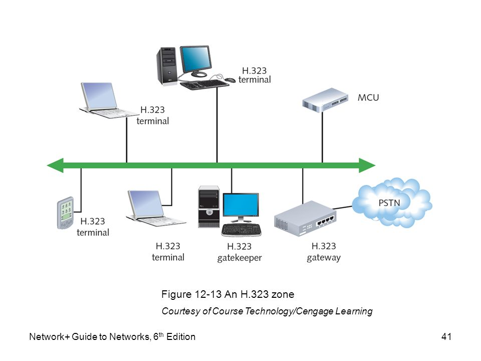 Figure 12-13 An H.323 zone Courtesy of Course Technology/Cengage Learning.