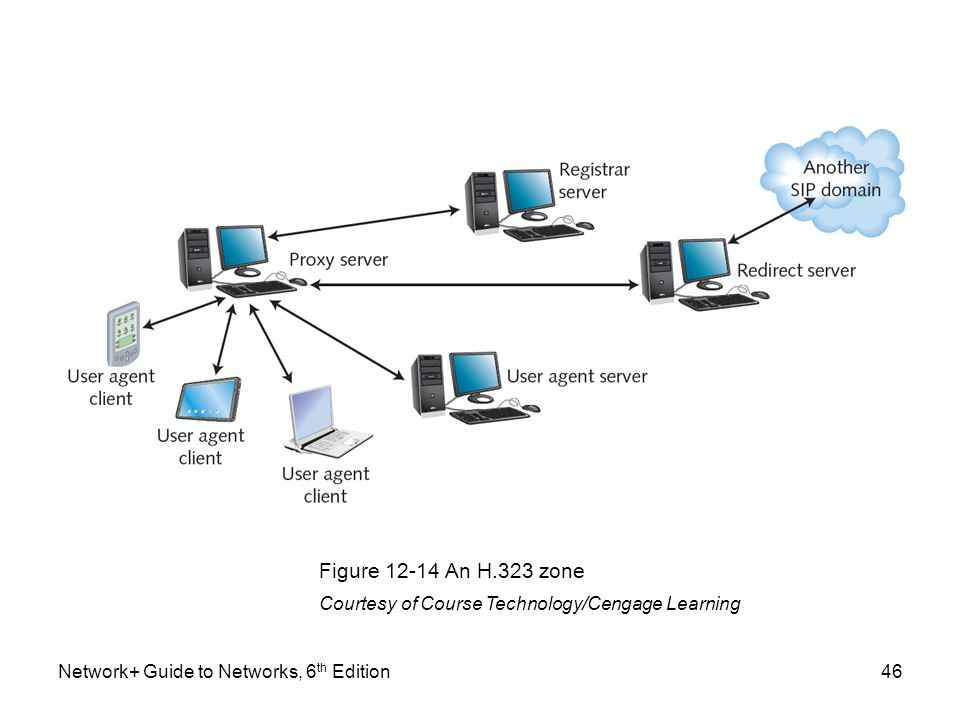 Figure 12-14 An H.323 zone Courtesy of Course Technology/Cengage Learning.