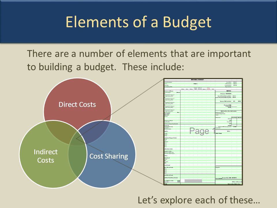 Elements of a Budget There are a number of elements that are important to building a budget. These include: