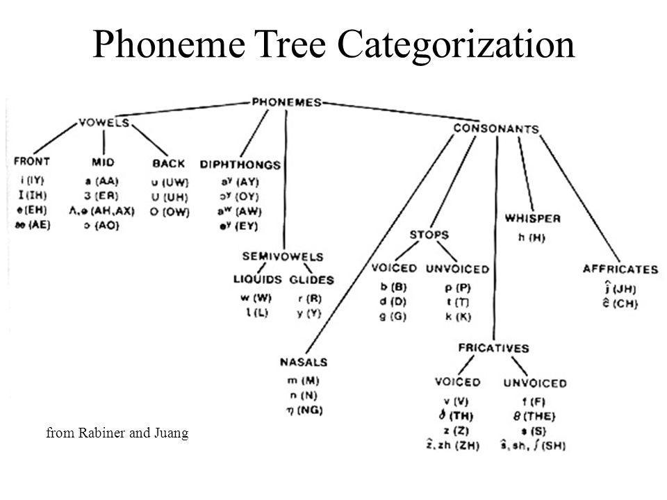 Phoneme Tree Categorization