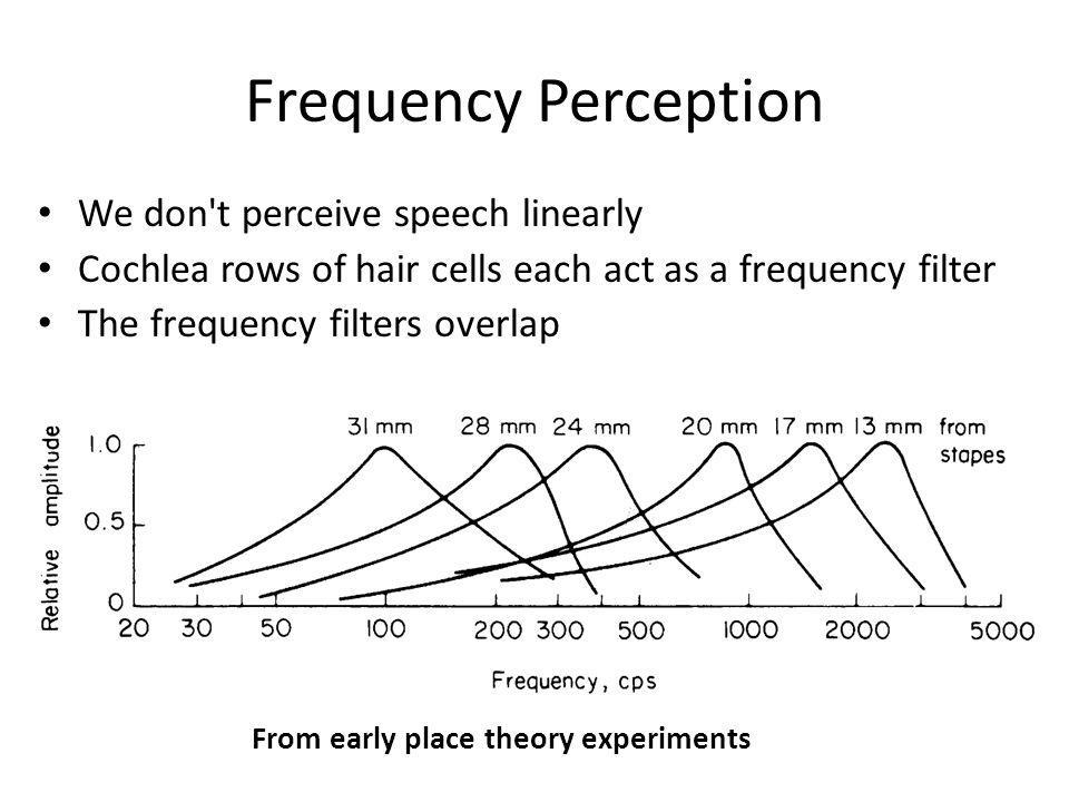 Frequency Perception We don t perceive speech linearly