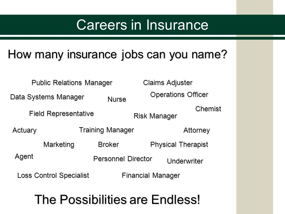 Careers in Insurance The Possibilities are Endless!