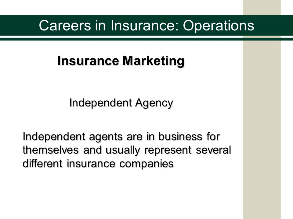 Careers in Insurance: Operations