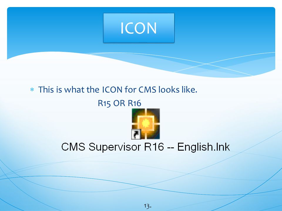 ICON This is what the ICON for CMS looks like. R15 OR R16 13.