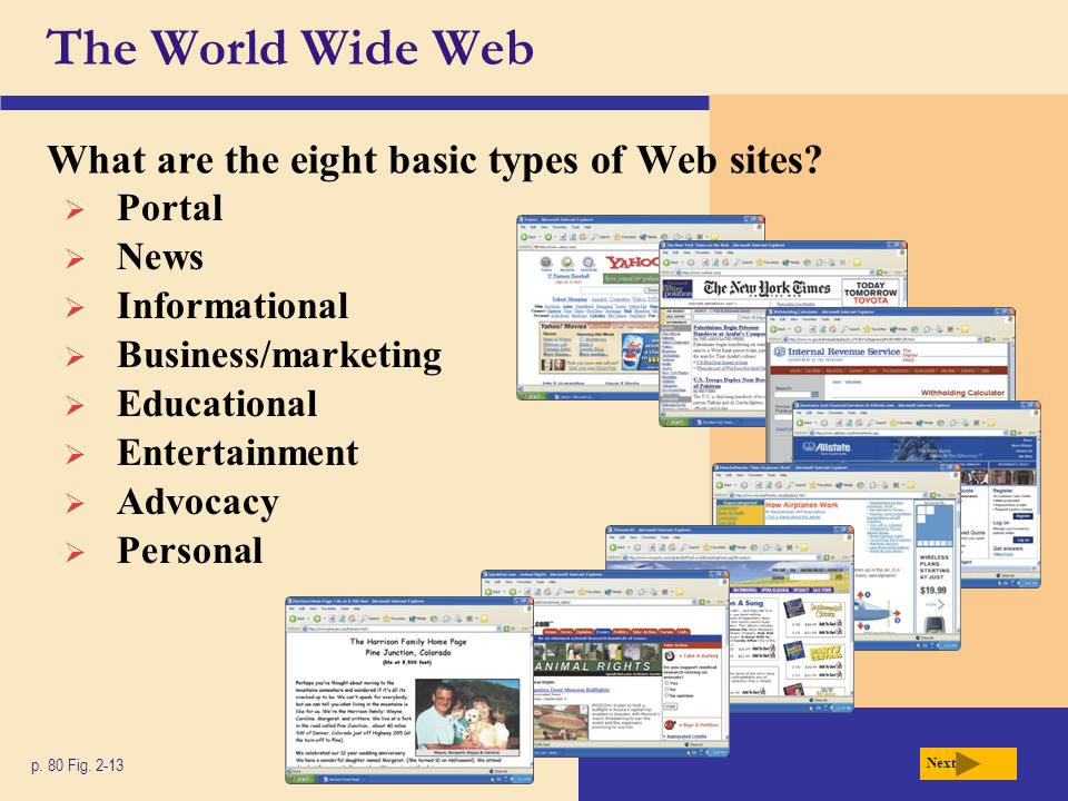 The World Wide Web What are the eight basic types of Web sites Portal