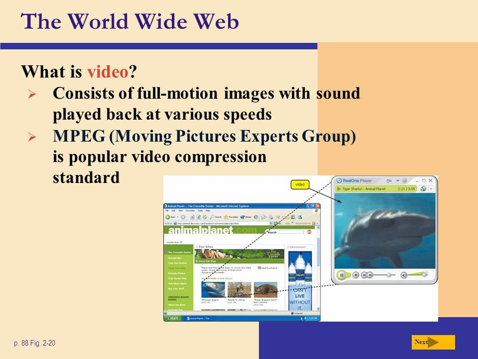 The World Wide Web What is video
