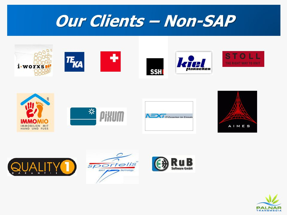 Our Clients – Non-SAP