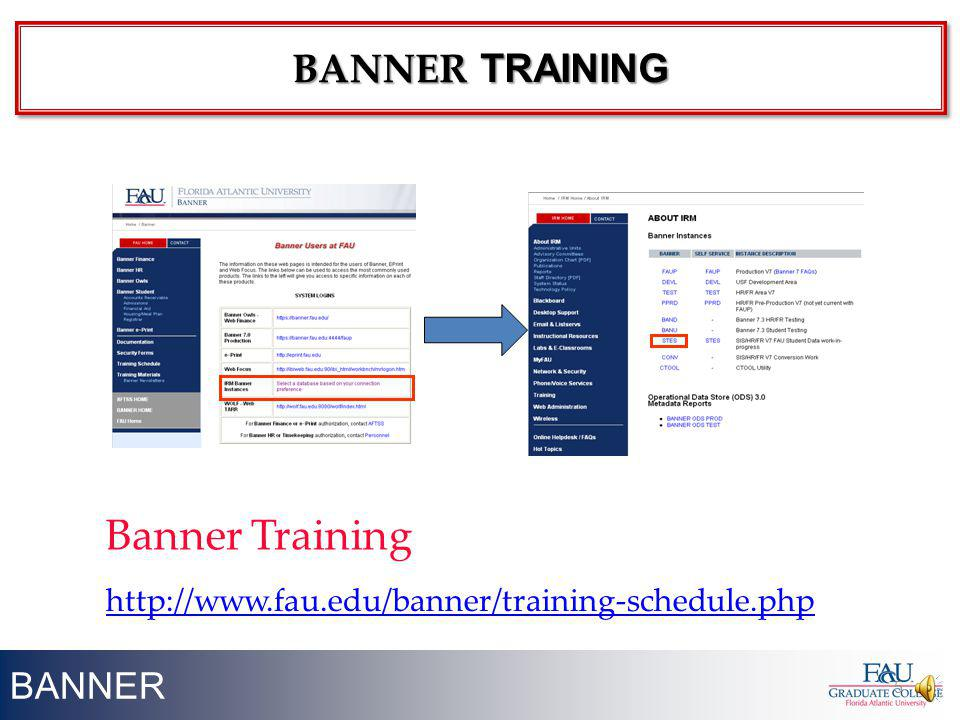 Banner Training BANNER TRAINING BANNER